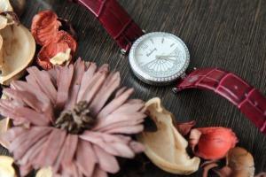 Успейте купить дизайнерские часы Issey Miyake и Blauling со скидкой 50%. http://Bestwatch.ru мы любим часы, г. Санкт-петербург. Лучший день для скидок.