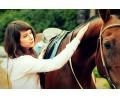 Скидка 50% на прогулки на лошадях по чистому бору, Ярославль, д.Красный бор.Мустанг76