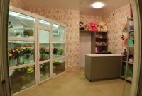 Открылся второй магазин по адресу пр - Vistcard Киров и Кирово-чепецк. Сегодня скидки.