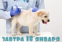 Напоминаем вам что в четверг у нас по плану вакцинация собак со скидкой 15%. Защитите своих хвостиков ещё и по приятной цене, г. Пермь. Большие скидки.