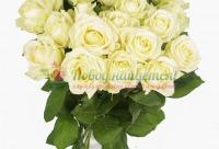 Клиентам из контакта скидка на любой букет 10% + Мишка в подарок - 101 роза доставка цветы розы, г. Москва. Новые скидки и распродажи.