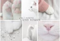 И уже традиционно любителей кошек в этот день ждёт 10% скидка на любой заказ с кошачьим декором, г. Санкт-петербург. У нас большая скидка покупателям.