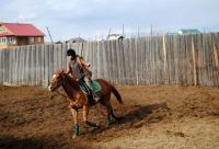 Для самых маленьких есть пони звоните 89244610759 - КсК золотая подкова, г. Якутск. Новые скидки и распродажи.