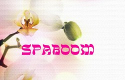 Скидка 10% на заказ в интернет магазине spaboom.ru