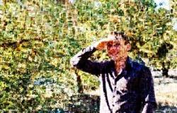 """Фотомозайка от Студии дизайна и печати """"Креатифф34"""""""