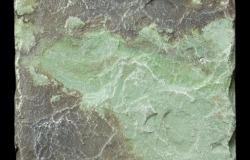 """Тротуарная плитка """"Песчаник Зелёный"""" со скидкой более 45%! В магазине природного и искусственного камня ИНКЕРКАМ, Санкт-Петербург."""